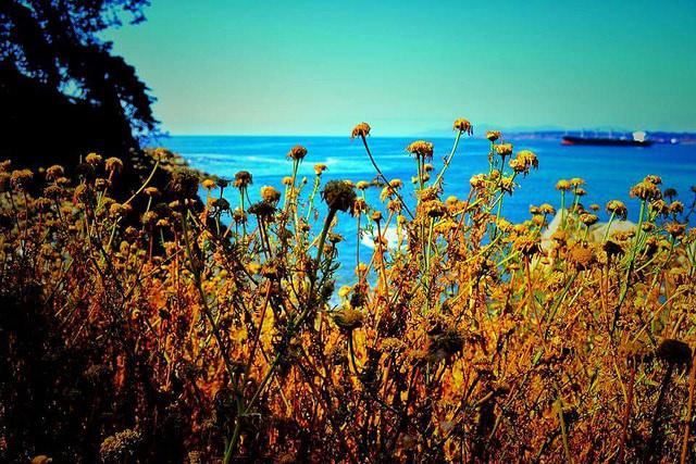 Las 7 calas más tranquilas de la Costa Brava