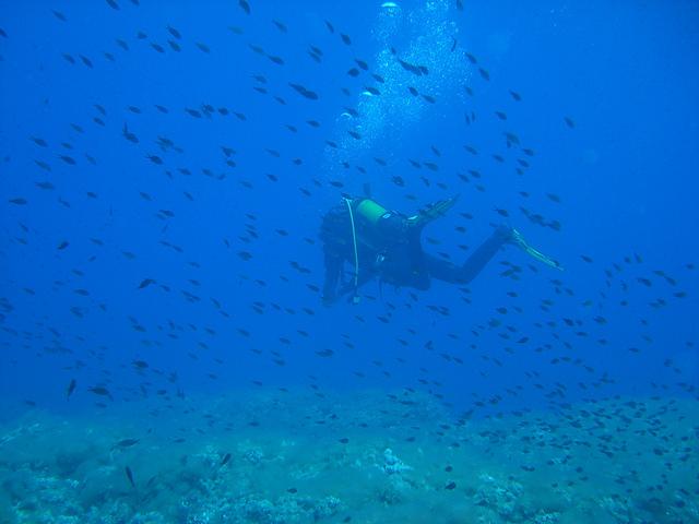 Viaje al Museo Submarino de Lanzarote