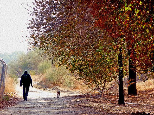 5 pueblos para disfrutar del otoño