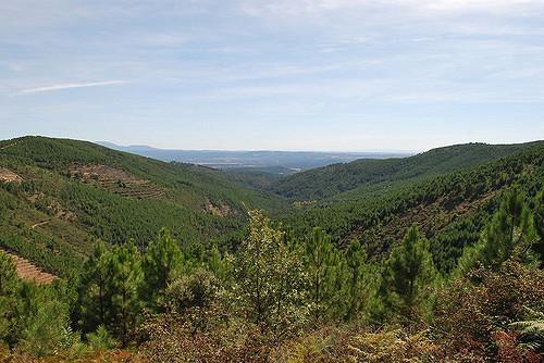 Ruta por Hoyos del Espino
