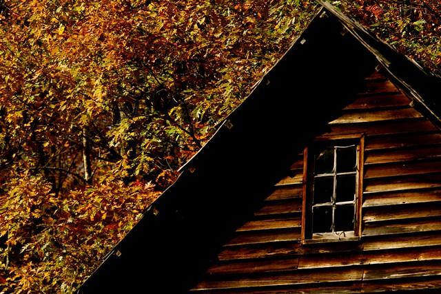 Las 4 mejores casitas de madera para alojarse