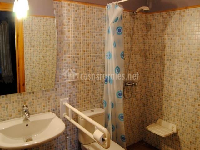 Baños Adaptados Para Personas Con Discapacidad:cuarto de baño con ducha para personas con discapacidad física