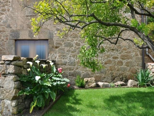 Zocailla en gata c ceres - Jardin con arboles ...