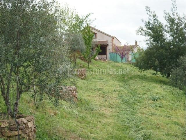 El olivar del puerto en horcajo de los montes ciudad real for Casa rural jardin del desierto
