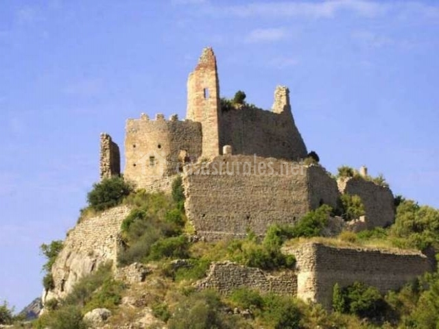 Vista del castillo de Miravet con vegetaciu00f3n alrededor