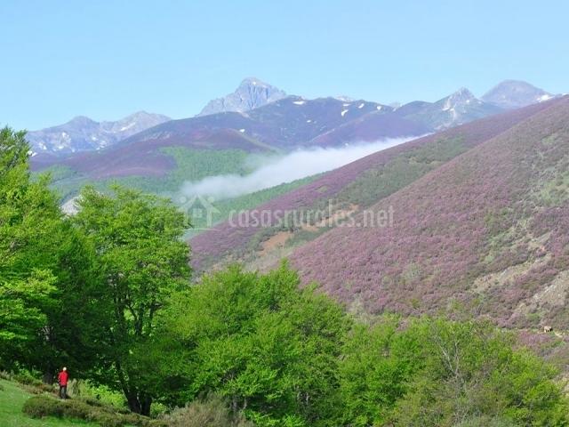 Casa el cinto en mave palencia - Casas rurales montana palentina ...