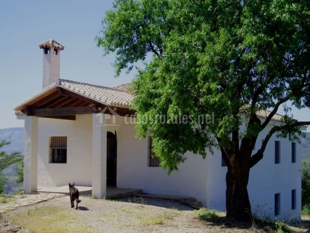 Casa rural la zenia en casabermeja m laga - Casas rurales baratas malaga ...
