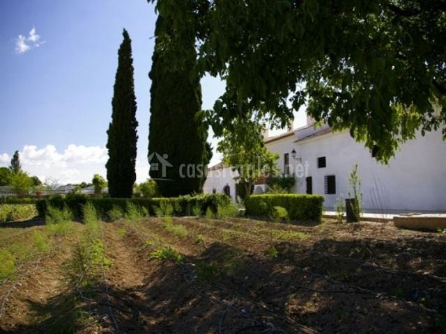 Casa del regaor cortijo los parrales en valderrubio granada - Casa rural los parrales ...