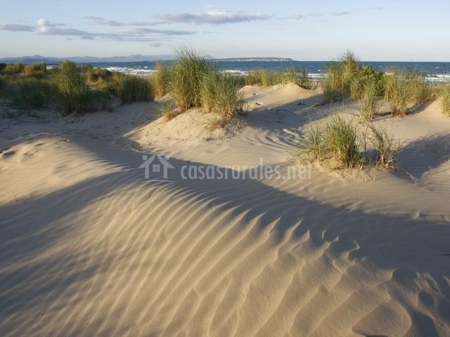 Camping lo monte en pilar de la horadada alicante for Camping jardin de las dunas