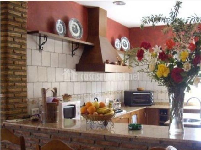 Agrolavia en bullas murcia - Cocina de ladrillo ...